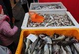 Lietuvius neramina žuvies ir silkės kainos: tokių dar nematė
