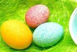 Absoliutus velykinis hitas: tokie kiaušiniai sužavės visą giminę