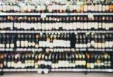 Alkoholio rinka pasikeitė: Lietuvoje žmonės perka vieną, Lenkijoje – kitą