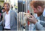 Princas Harry užkariavo internautų širdis: miela akimirka griebia už širdies