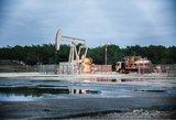 Energetikos kainų dugnas – kaip keisis naftos ir dujų kainos?