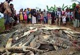 Siaubingas kerštas Indonezijoje: po vyro žūties užmušė 300 krokodilų