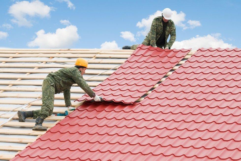 Pasikeiskite stogą perpus pigiau (Valstiečių laikraščio nuotrauka)