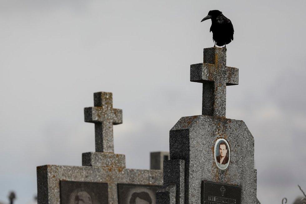 Ukrainoje rasta numanomų sovietinių represijų aukų masinė kapavietė