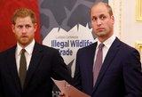 Princą Harry kankino vienatvė: dėl to kaltino Williamą