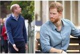 Princai Williamas ir Harry ėmė sekti Markle pavyzdžiu: neįmanoma nepastebėti