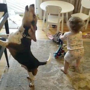Neįtikėtinas šuns talentas užkariauja internetą