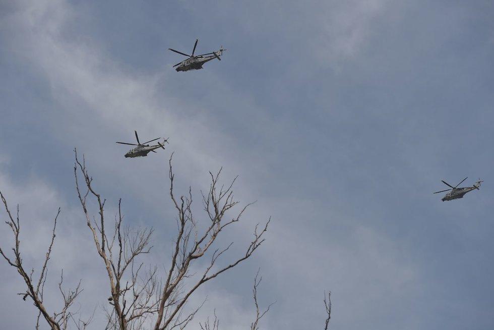 Sraigtasparniai (nuotr. SCANPIX)