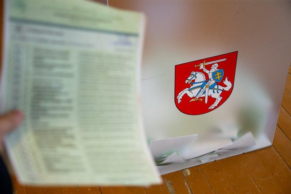 Lietuviai balsuoja  (nuotr. Fotodiena.lt)