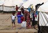 Ministras: pabėgėliai Lietuvoje greičiau išmoksta rusų, nei lietuvių kalbos