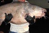Kupiškio karjere veis gėlavandenes žuvis