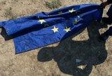 Ministras: pabėgėlių perkėlimo tempas Lietuvai yra per didelis