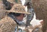 Adrenalino fanatiko pasaulio rekordas – daugiau nei milijonas bičių ant kūno