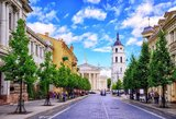 Prancūzijos rinkimai: Lietuvoje gyvenantys prancūzai rinkosi E.Macroną