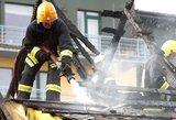 Šiemet gaisruose jau žuvo 95 žmonės