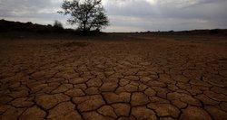 Įvertino orų poveikį: šis pavasaris veda katastrofos link
