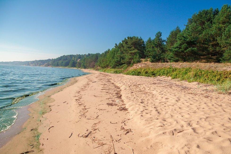 Lietuvos gamta (nuotr. 123rf.com)