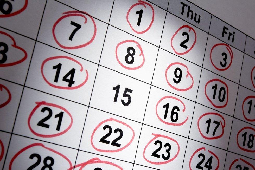 Kalendorius (nuotr. 123rf.com)