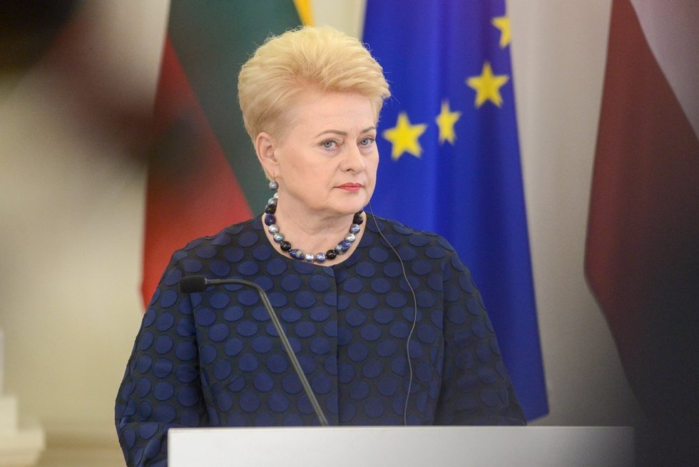 Prezidentė Dalia Grybauskaitė (nuotr. fotodiena/Justino Auškelio)
