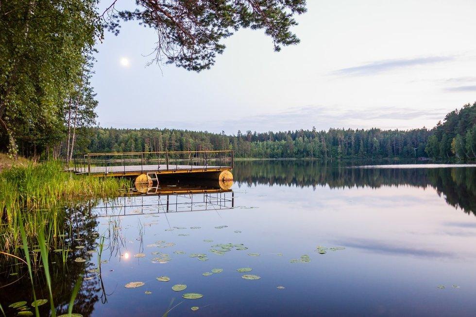 Ežeras (nuotr. 123rf.com)
