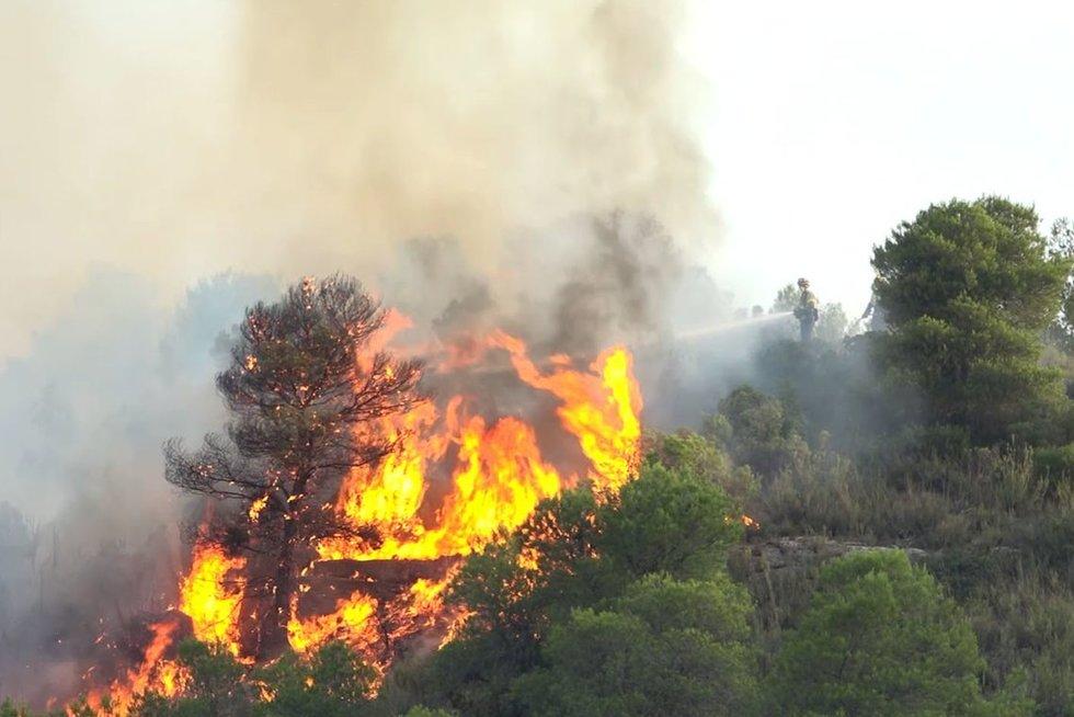 Miško gaisras Ispanijoje (nuotr. Scanpix)