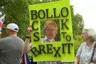 Britų protestas (nuotr. stop kadras)