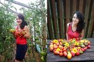 Daivos užauginti pomidorai (nuotr. asm. archyvo)