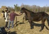 Populiarėja žirgų terapija: 4-metė Urtė pasikeitė iš esmės