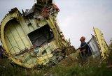 Malaizija gina Rusiją: nemano, kad ji atsakinga už MH17 aviakatastrofą