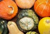 Tikro rudens skonis: 3 gardūs moliūgų receptai