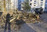 Ugniagesiai kovojo su stichija, per dieną 19 kartų šalino nuverstus medžius