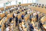 Seimas pailgino laikotarpį, skirtą organizuoti referendumui dėl dvigubos pilietybės