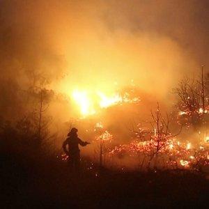 Atėnai skęsta dūmuose, o nevaldomas gaisras glemžiasi unikalias teritorijas: evakuota šimtai gyventojų