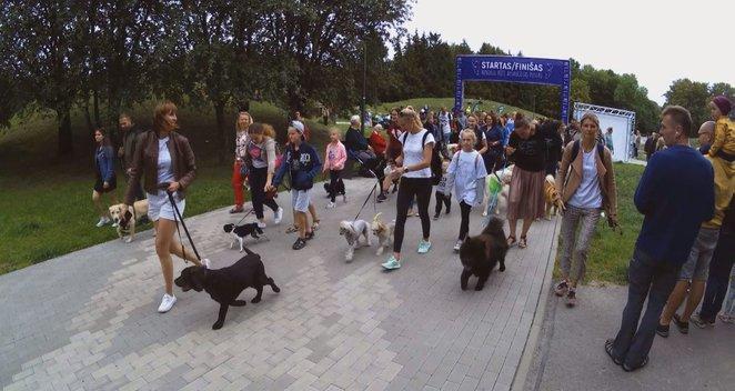 Netikėtas pasiūlymas Vladai Musvydaitei - sukurti kačių trasą