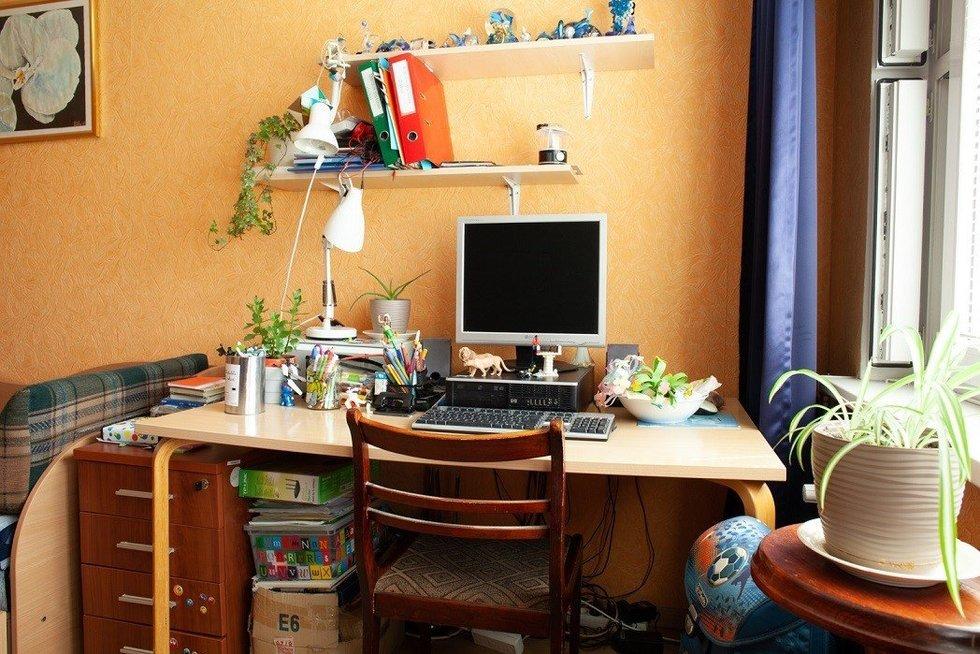 Kaip įrengti kambarį pirmokui, kad vietos užtektų ir vyresniam broliui (nuotr. TV3)