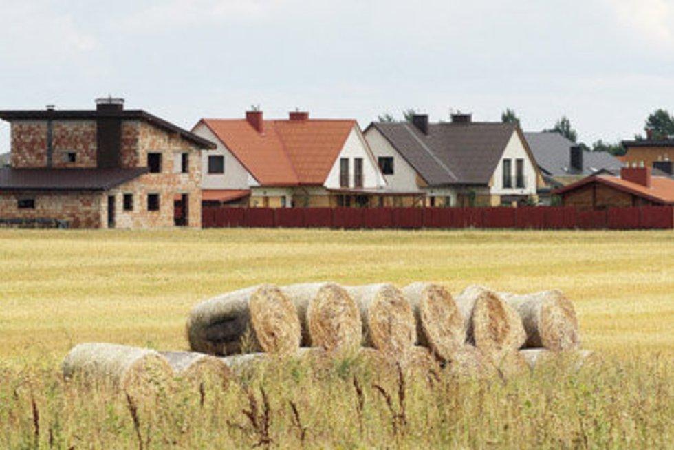 Kad čia kaimo teritorija, išduoda tik šieno ir šiaudų ritiniai, statomi namai – lyg mieste. (nuotr. Giedriaus Baranausko)