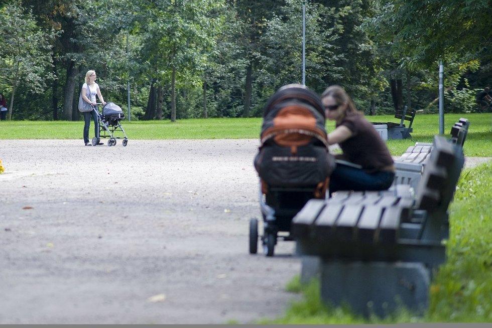 Vežimėlis (nuotr. Fotodiena.lt/Audriaus Bagdono)