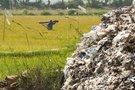 Plastiko fermos (nuotr. stop kadras)