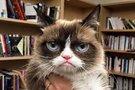 """Grumpy Cat kačiukas (nuotr. asmeninio albumo (""""Facebook"""")"""