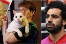 Neklystantis katinas spėja mačo baigtį: Egiptas krausis lagaminus? (nuotr. SCANPIX)