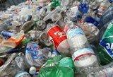 Japonijoje nugaišo devyni elniai: prisirijo plastiko