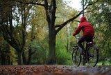 Lietuviško rudens orai: vilčių teikia viena diena