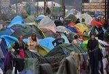 ES susitarė pateikti pasiūlymą Turkijai dėl migracijos