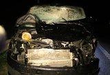 Žiauri avarija netoli Molėtų: iš tamsos išniręs briedis šoko į kelią