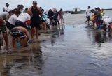 Vieniems gražiausių Brazilijos paplūdimių gresia ekologinė katastrofa