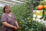 Karštas oras palankus ne tik atostogoms – šventybrastiškė džiaugiasi gausiu daržovių derliumi