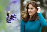 Brangiausios grožio procedūros: kunigaikštienė Catherine naudoja bičių nuodų injekcijas