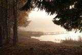 Savaitgalio orai: vis labiau jausime rudenį