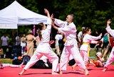 Vilniečiams – atviros Aikido treniruotės Vingio parke