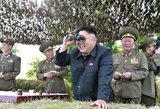 Kuria informacija apie Šiaurės Korėją pasitikėti?